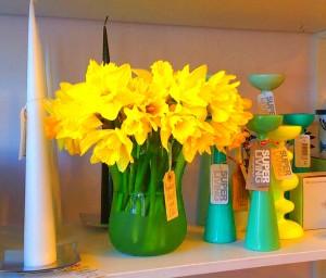 Spring, Daffodils in Aqua vase!