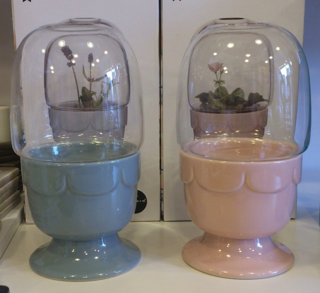 Perfect gift for the person with green fingers... super sweet little greenhouse by Sagaform